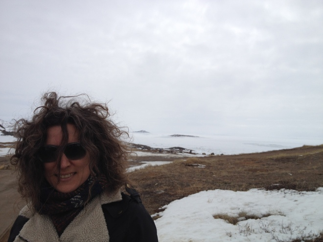 May in the Canadian Arctic - Donna Bilak